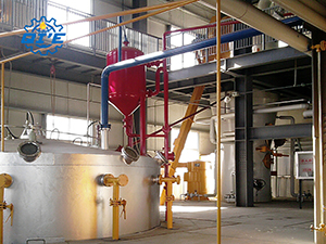 cottonseed oil mill project cost | cottonseed oil extraction