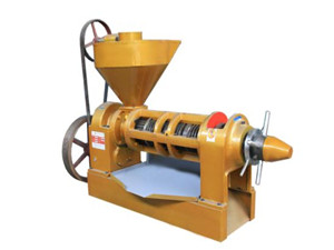 automatic oil press machine 300w oil extractor nut olive oil expeller oil press